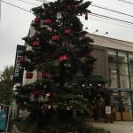 吉祥寺でクリスマス発見!